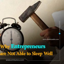 Why Entrepreneurs are Not Able to Sleep Well
